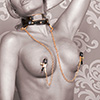 Fetish Fantasy Gold Pinces tétons Ff Gold Collar W Nipple Clamps